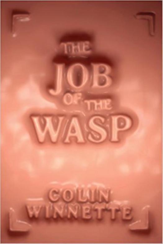 wasp-bspline.jpg