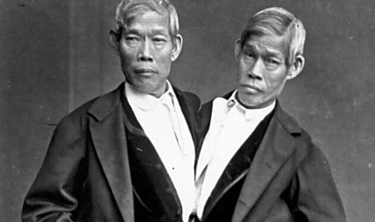 Book Review - INSEPARABLE: The Original Siamese Twins and Their Rendezvous with American History by YUNTE HUANG